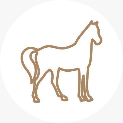 Icon Tierrecht